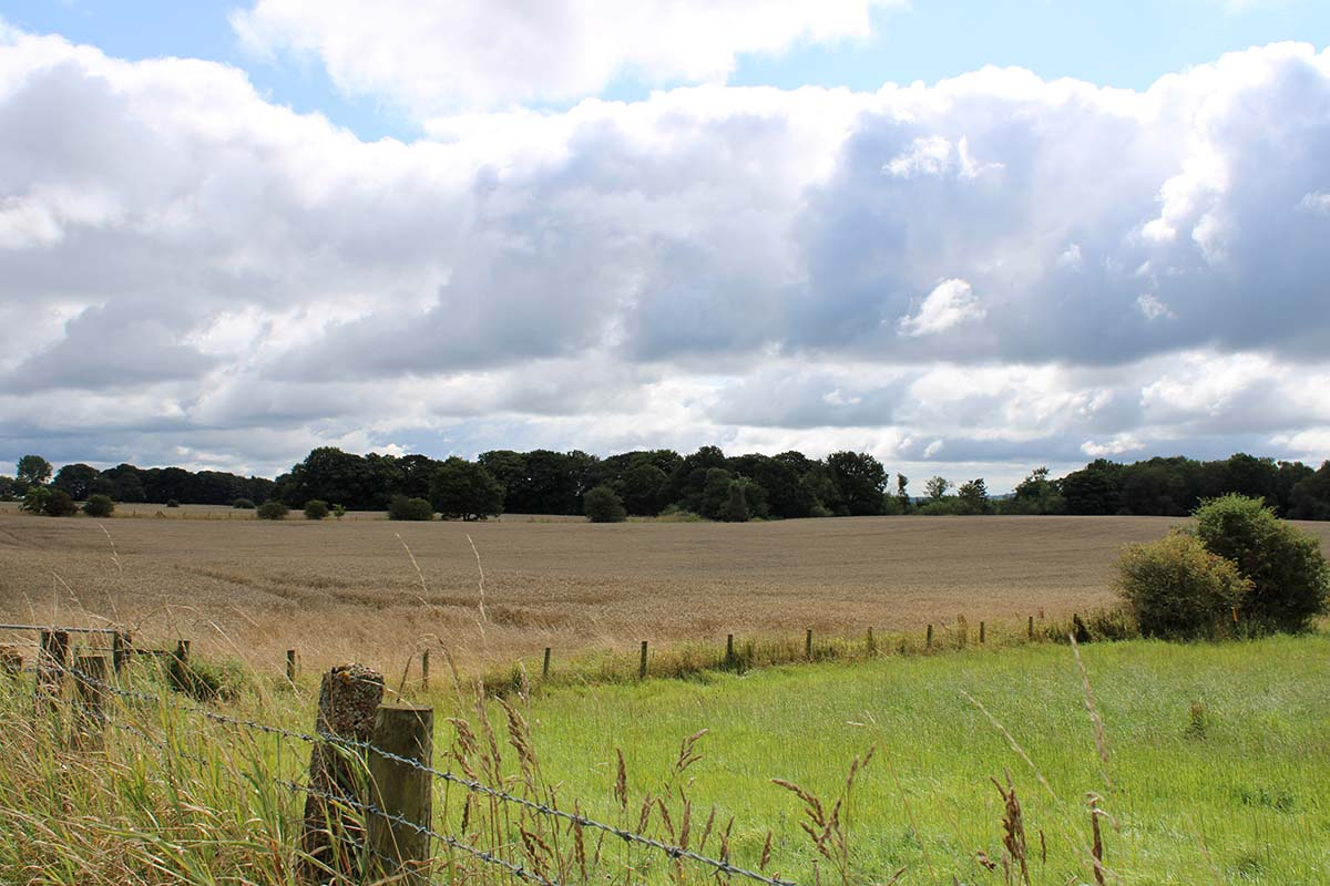 plots-of-land-with-planning-permission